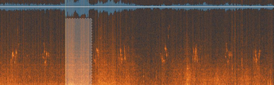 audioediting04